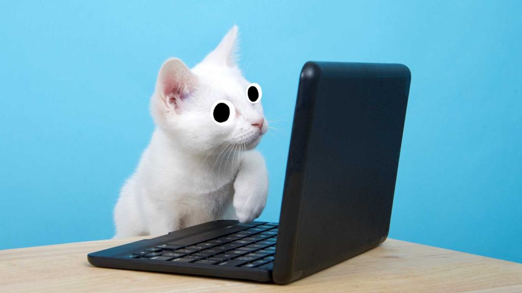 A cat looking at a computer