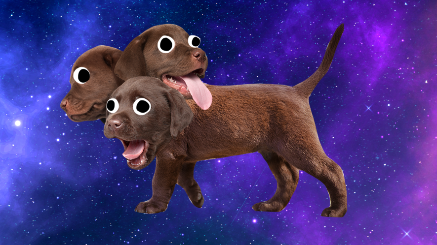 Three headed dog on space background