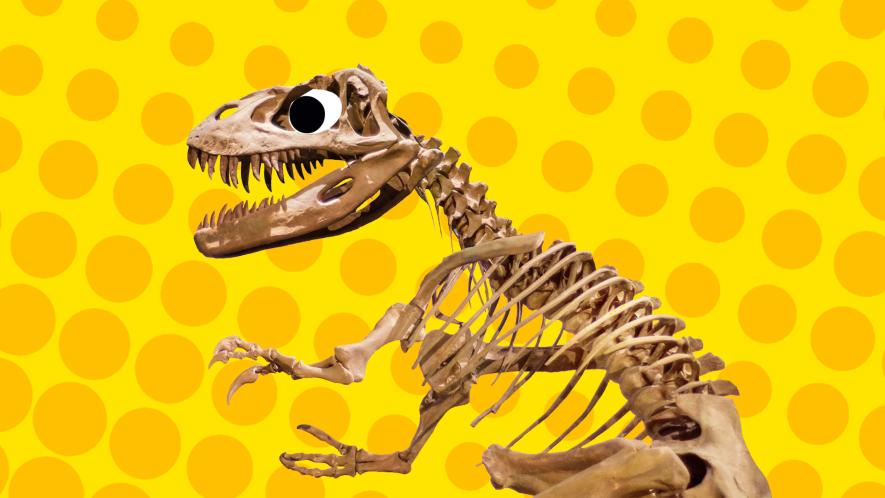 T-Rex skeleton on yellow background