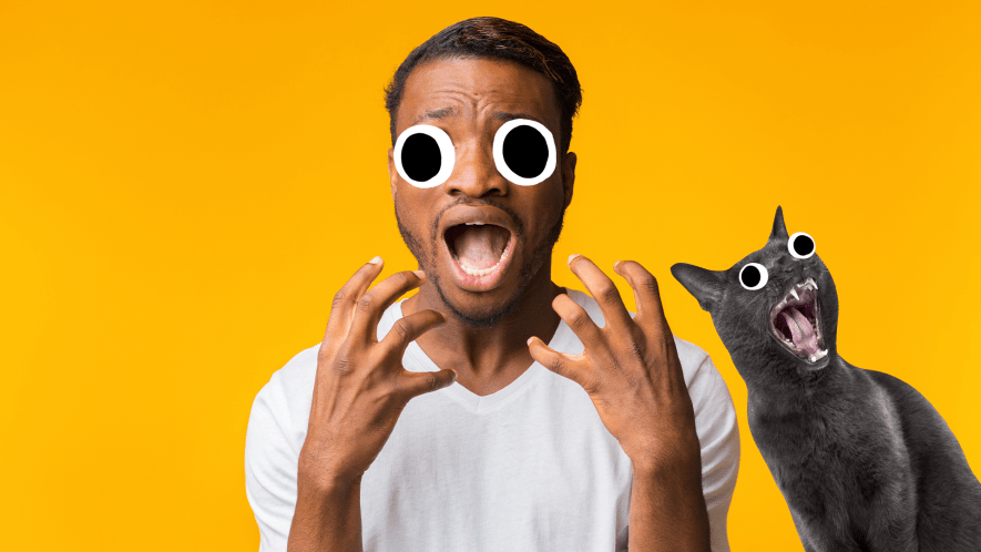 Scared looking man with screaming cat on yellow background