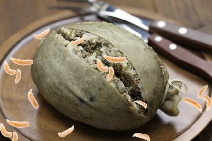 Maggoty haggis with knife and fork