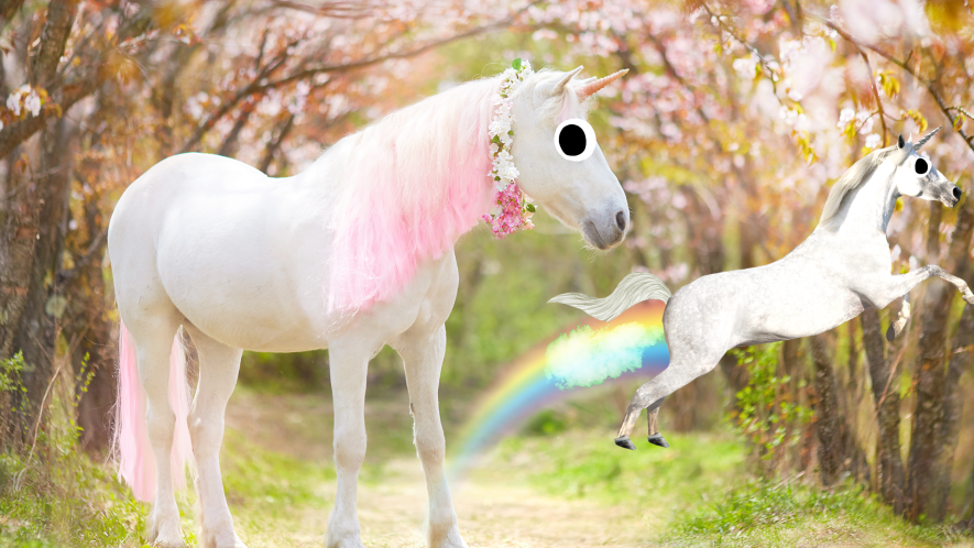 Unicorn in forest with flying unicorn farting rainbows
