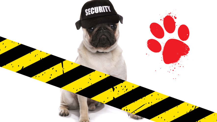 Dog with a security hat, caution tape and paw print on white background