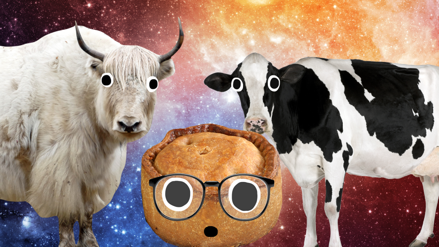 Beano animals and pie on space background