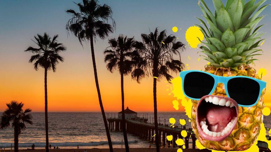 A pineapple on a California beach