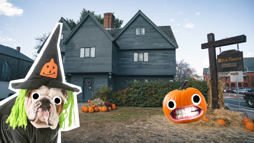 Salem witch house with Beano witch dog and pumpkin