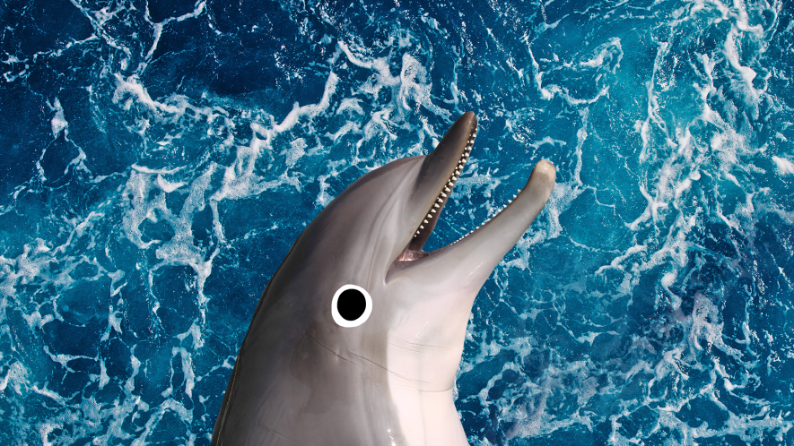 Sea background with smiling Beano dolphin
