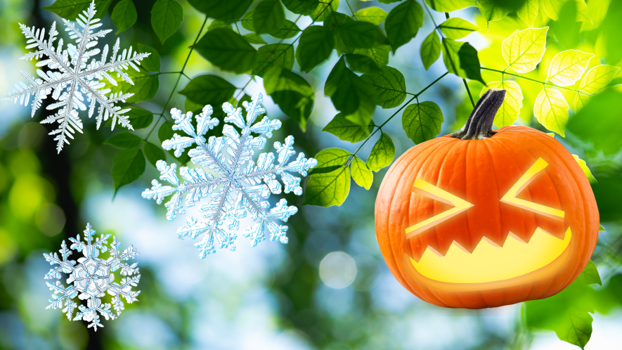 Leaves, snowflakes and pumpkin