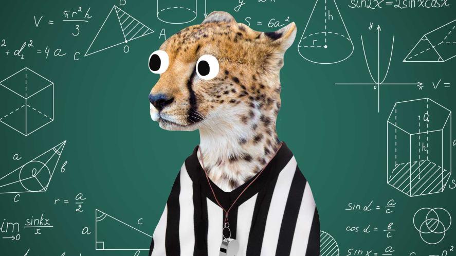 A maths cheetah
