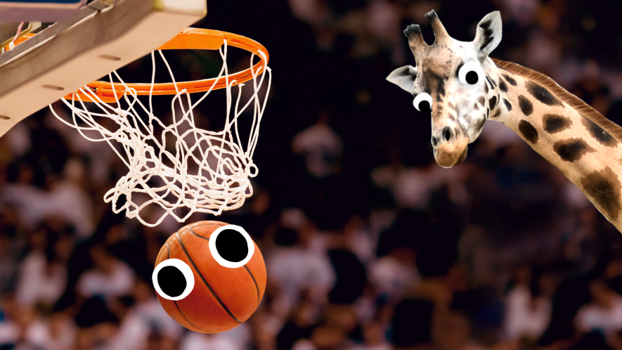 Basketball with eyes in hoop and derpy giraffe