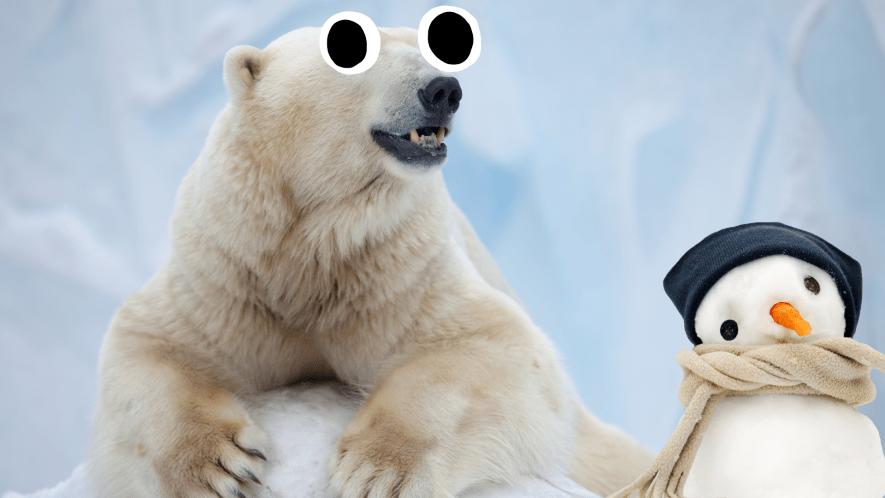 Polar bear with derpy snowman