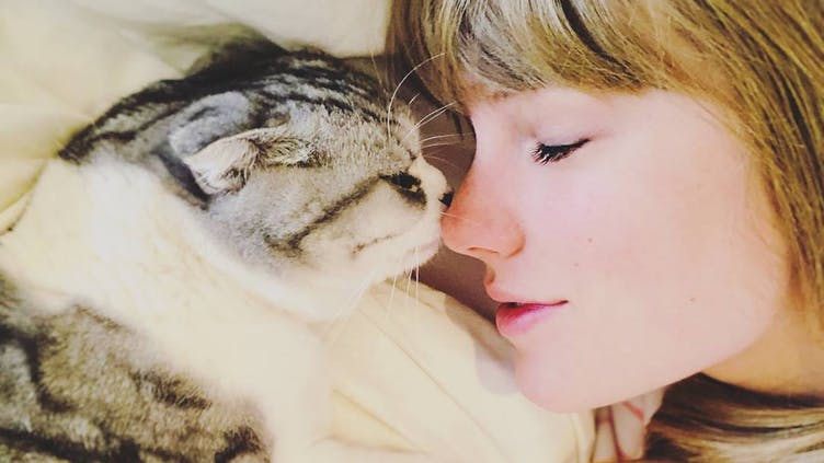 Taylor Swift and her pet cat