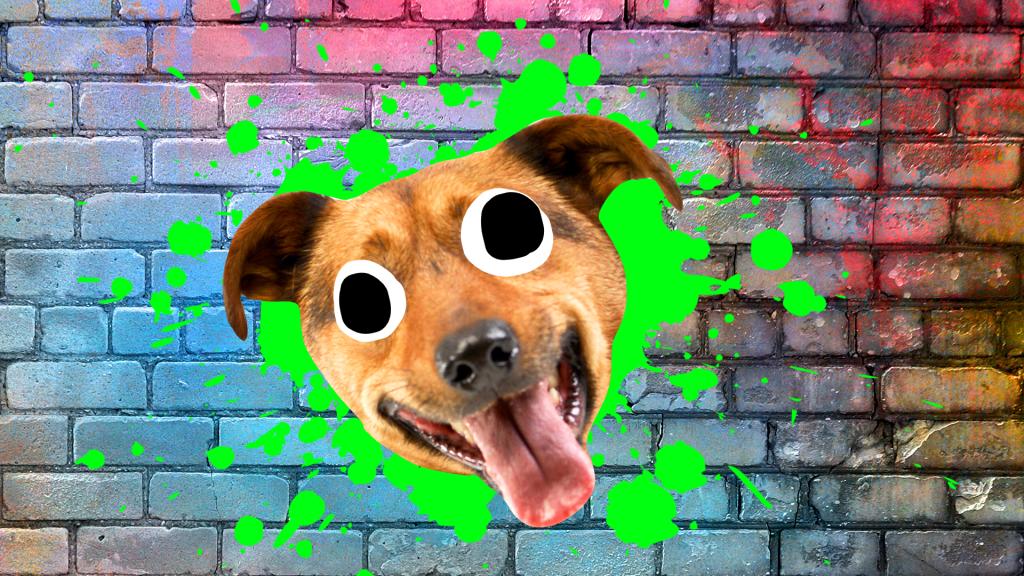 Laughing brown dog