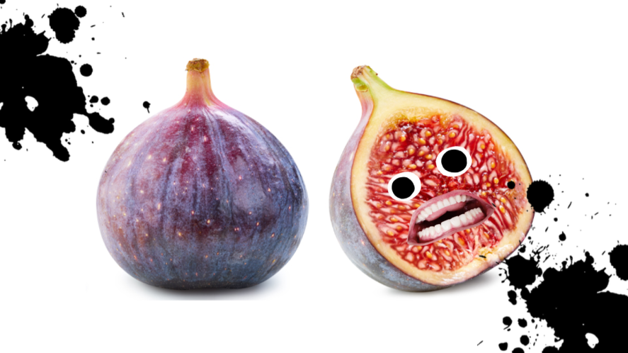Scared figs