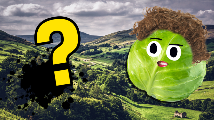 A sprout in a fantasy landscape