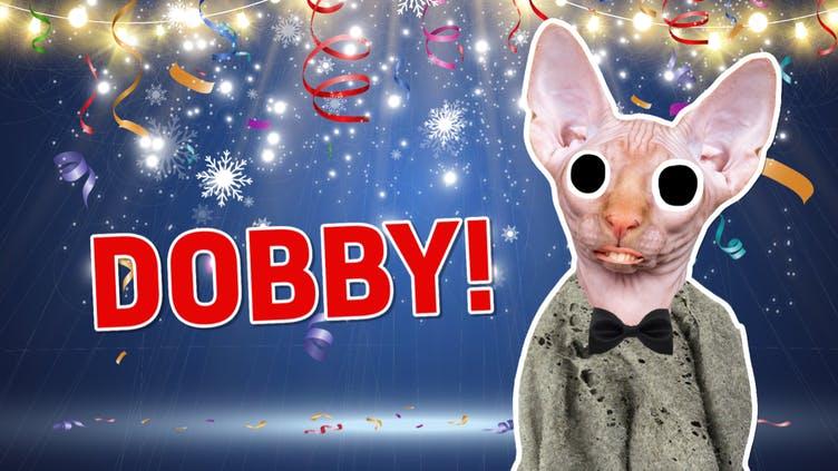 Result: Dobby