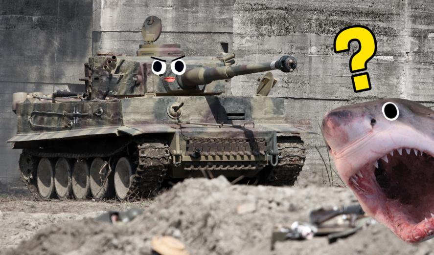 A tank and a shark