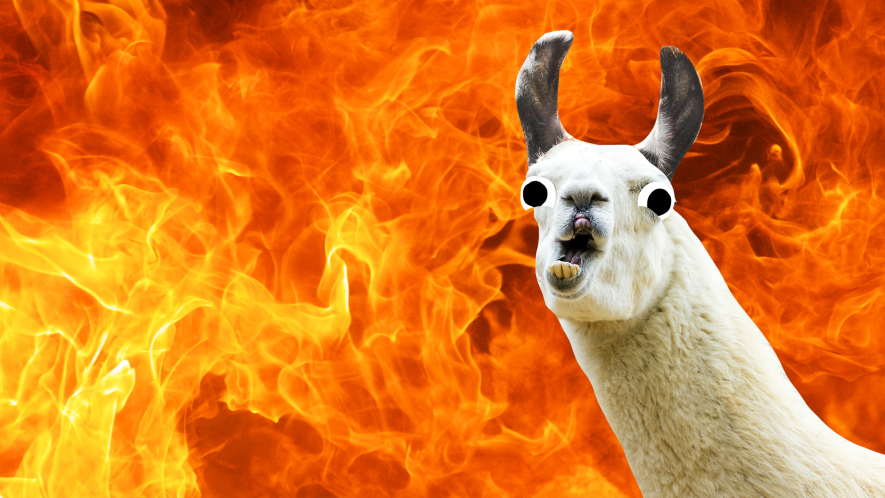 A funny llama and some flames
