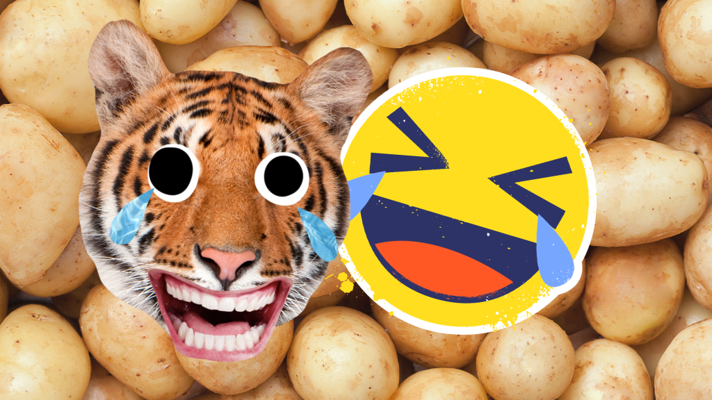 A laughing crying tiger