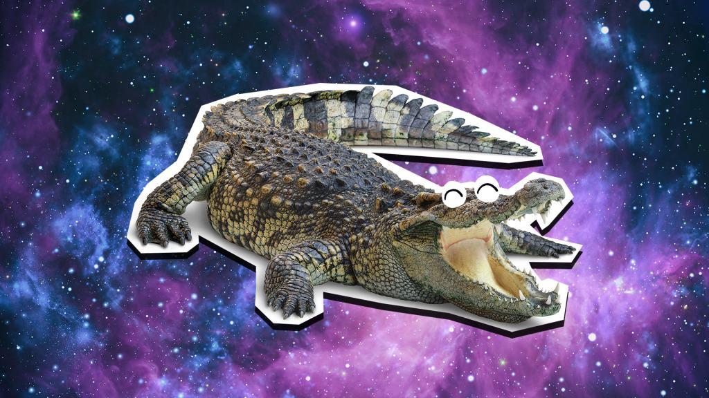Laughing crocodile