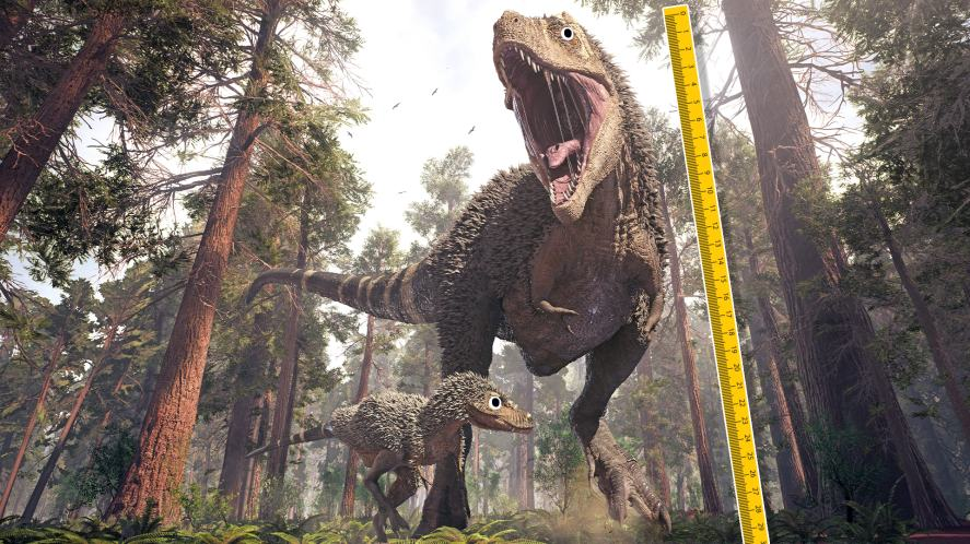 What is the height of a T-rex?