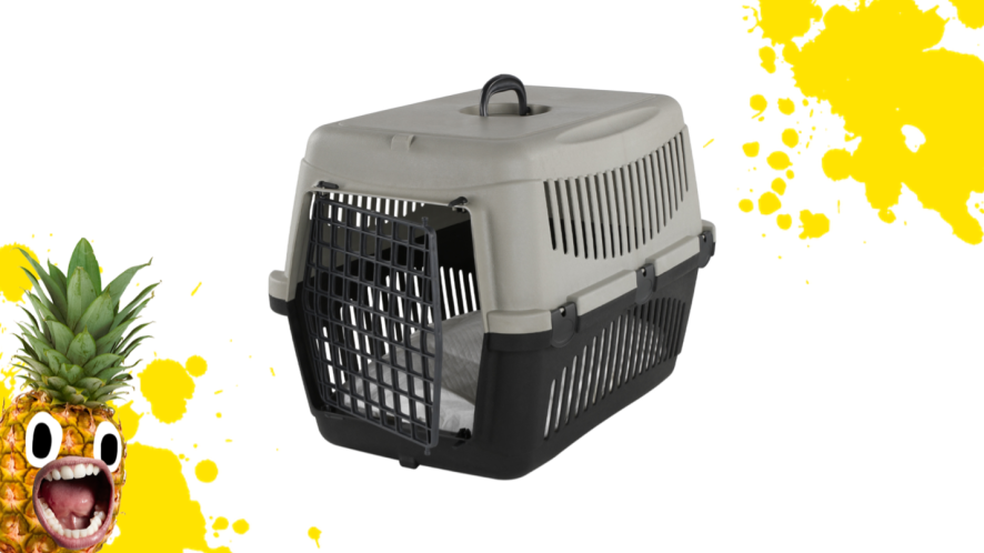 An empty pet carrier
