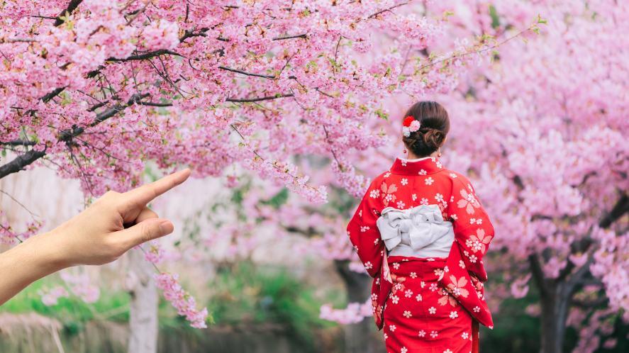 A flowery park in Japan