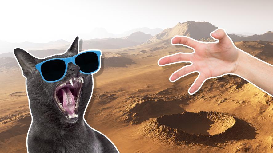 Mars dusty landscape