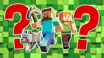 Minecraft mode quiz