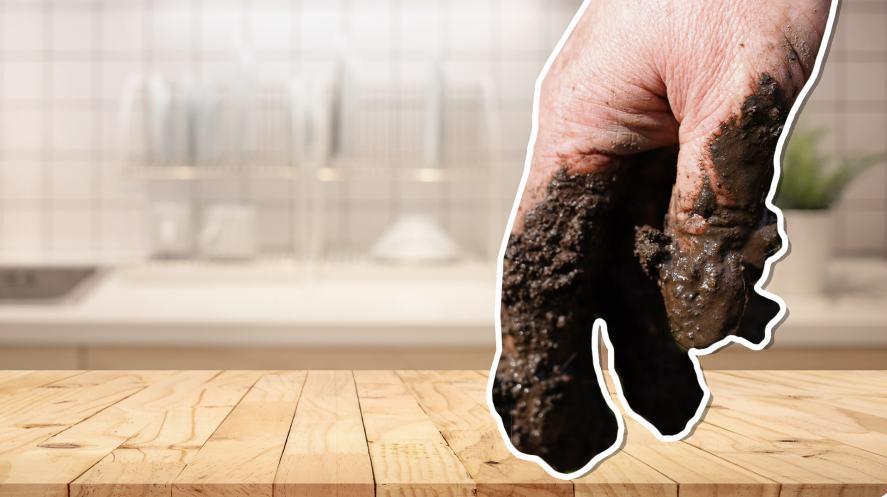 A muddy hand in a clean kitchen