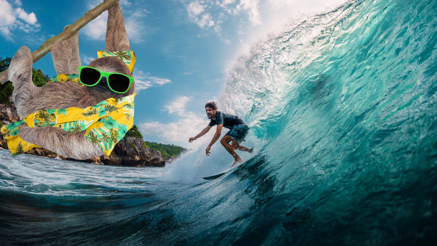 Surfer with holiday sloth