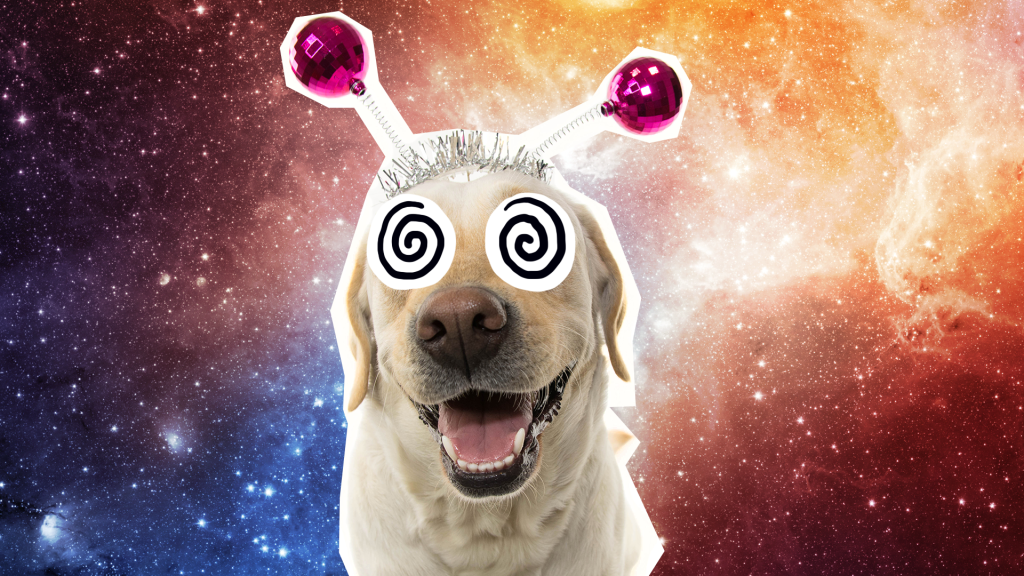 Alien dog on space background