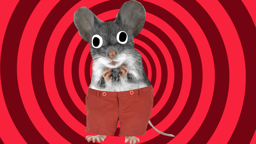 Mouse on spiral background