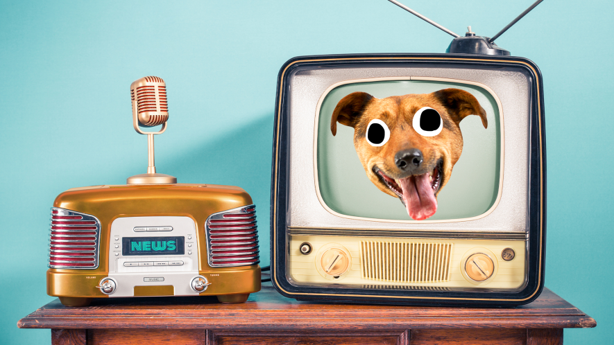 Old fashioned TV with dog face