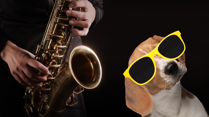 Someone playing saxophone with cool dog
