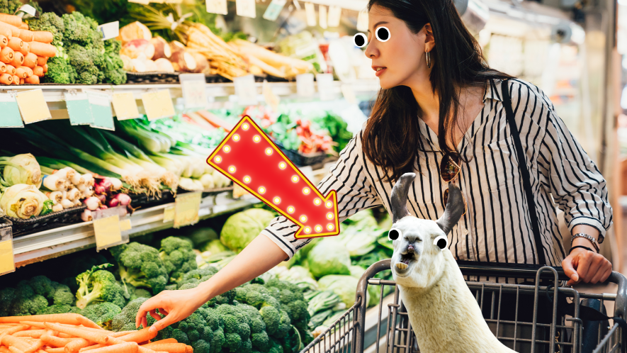Woman in supermarket with llama