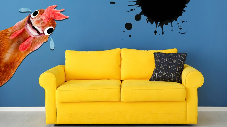 A chicken laughs at a brightly-coloured sofa