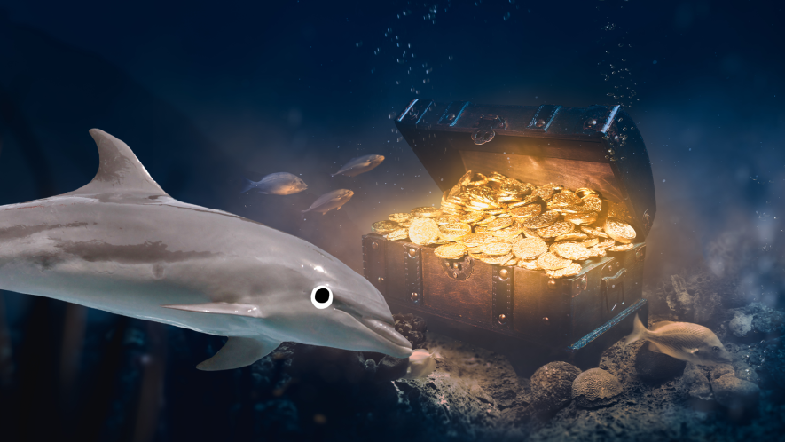 Dolphin and underwater treasure chest