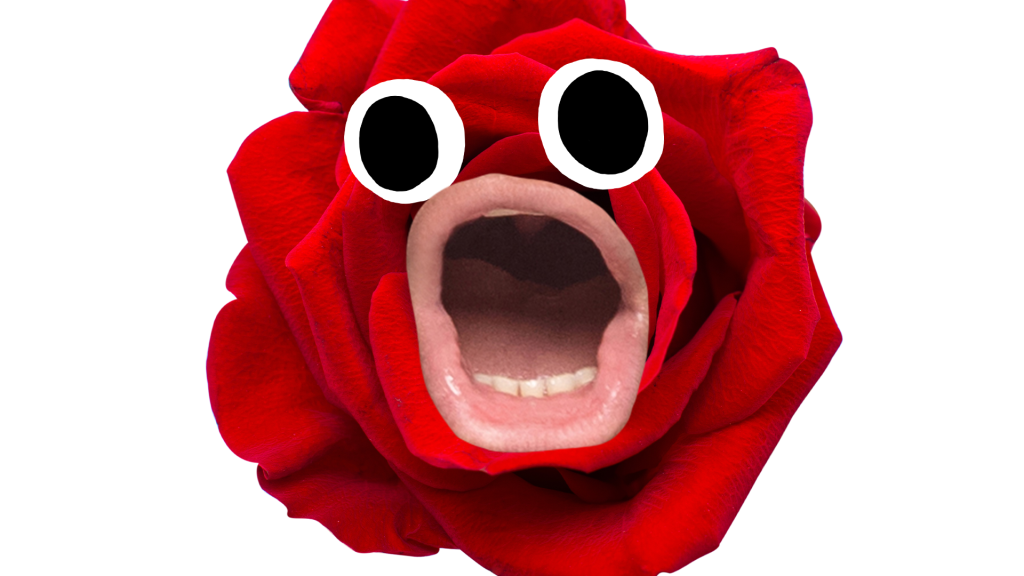 Rose with screaming face