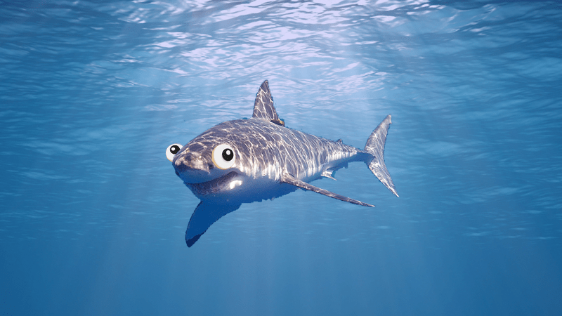 A shark swimming in the water