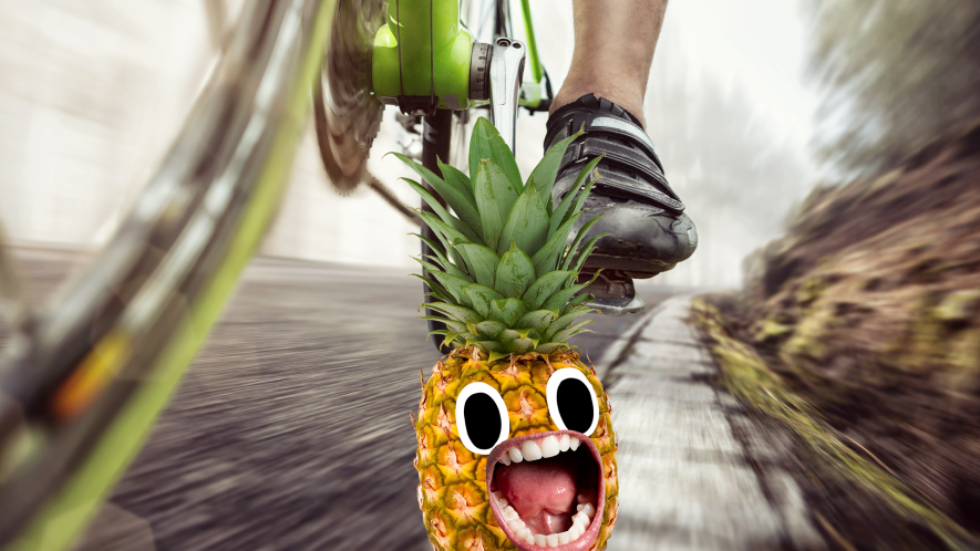 Pinapple looking scared of bicycle wheel