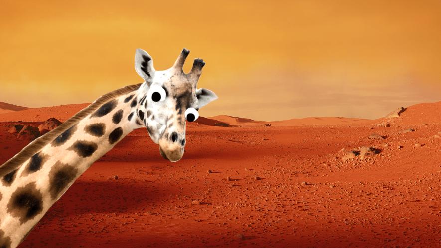 Giraffe on mars