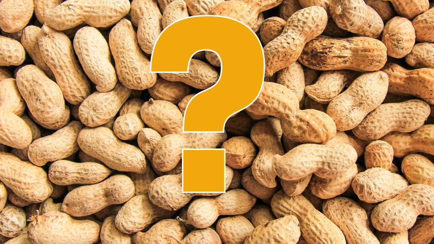 Nuts and question mark
