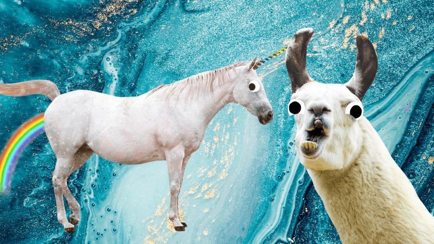 Unicorn and Llama on turquoise background