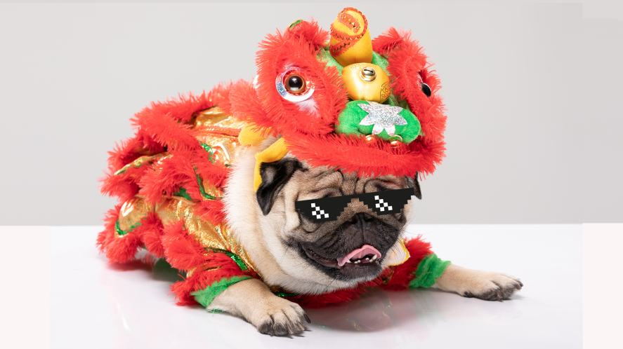 Frank in a Chinese New Year outfit