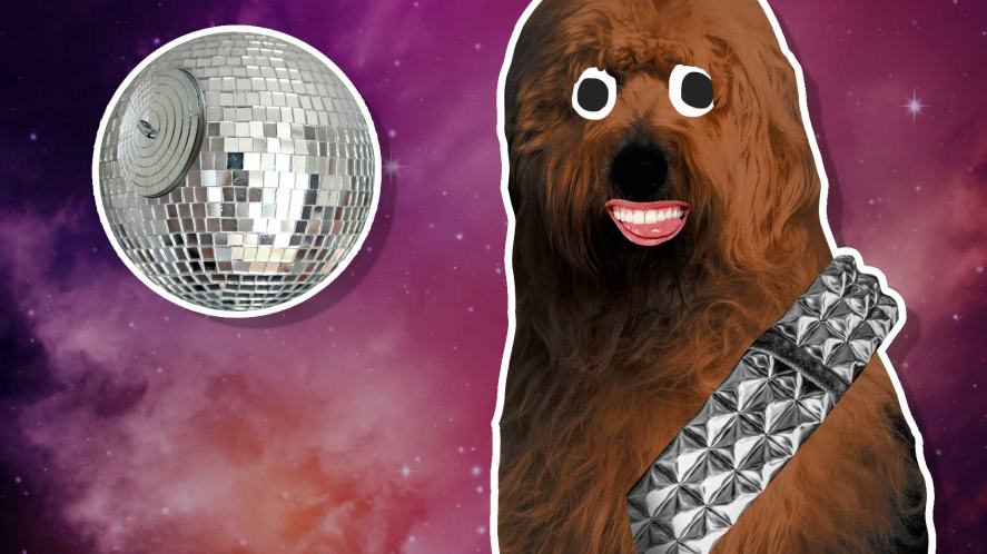 A Chewbacca lookalike and a mirror ball which looks like the Death Star
