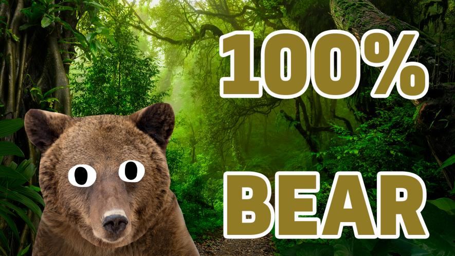 100% Bear result