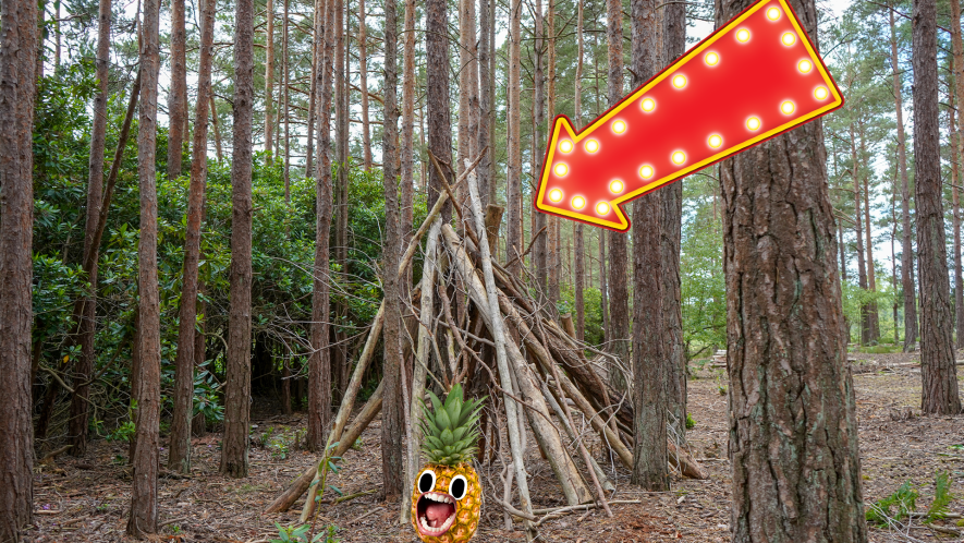 Stick shelter in forest with arrow and screaming pineapple