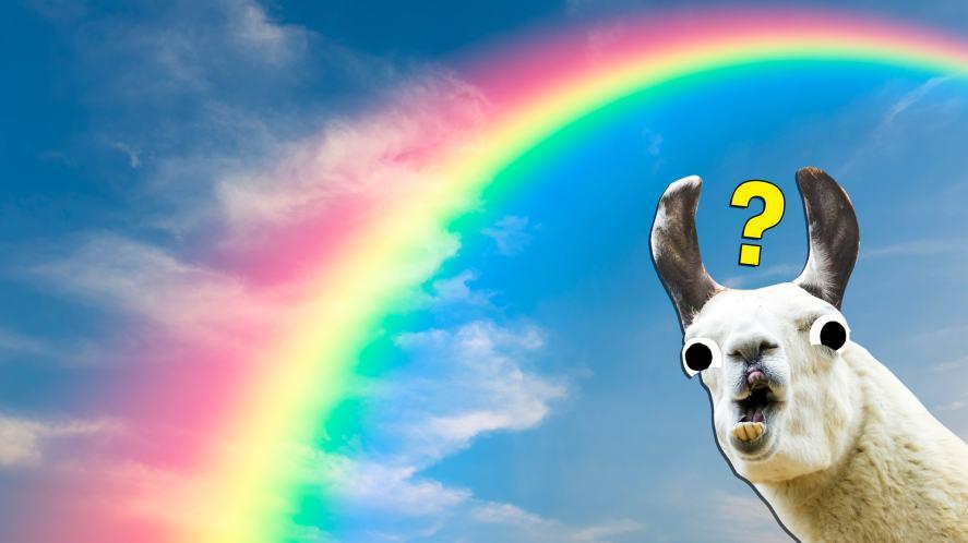 A llama looks at a rainbow