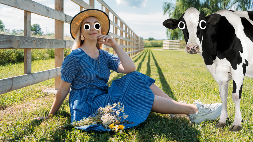 Woman in field with cow